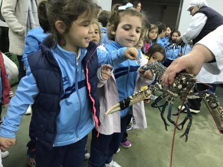 Jornadas Infantil 8